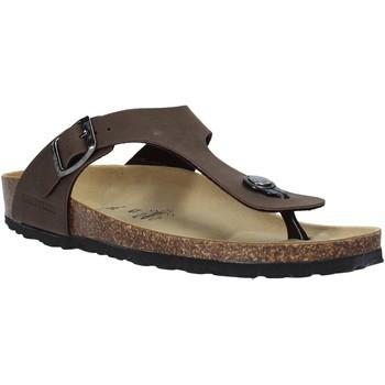 Sapatos Homem Chinelos Valleverde G51830 Outras