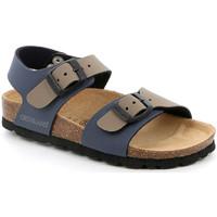 Sapatos Criança Sandálias Grunland SB0901 Azul