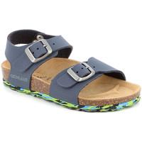 Sapatos Criança Sandálias Grunland SB1644 Azul