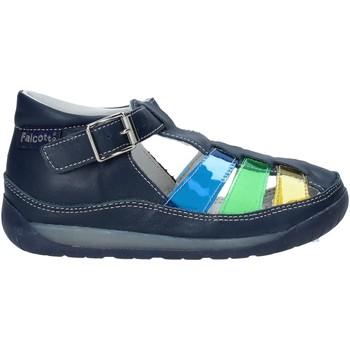 Sapatos Criança Sandálias Falcotto 1500746 02 Azul
