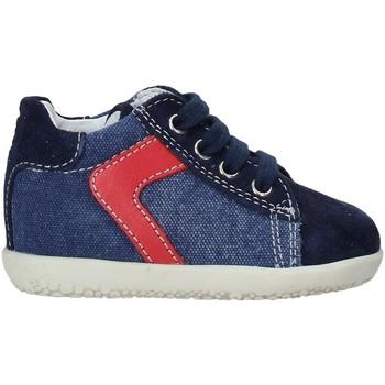Sapatos Criança Sapatilhas de cano-alto Falcotto 2014597 04 Azul