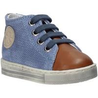 Sapatos Criança Sapatilhas de cano-alto Falcotto 2014600 01 Castanho