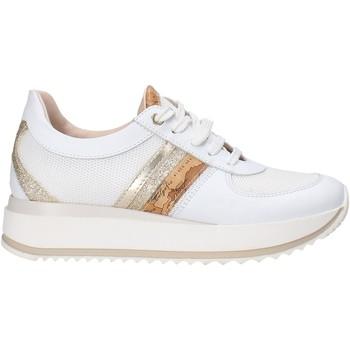Sapatos Criança Sapatilhas Alviero Martini 0605 0682 Branco
