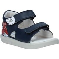 Sapatos Criança Sandálias Falcotto 1500898 01 Azul