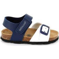 Sapatos Criança Sandálias Grunland SB1892 Azul