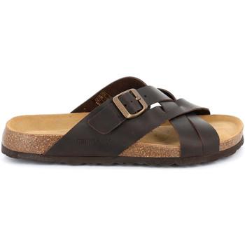 Sapatos Homem Chinelos Grunland CB2635 Castanho
