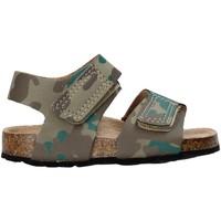 Sapatos Criança Sandálias Balducci AG-1558 Castanho