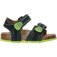 Sapatos Criança Sandálias Balducci AG-1559 Azul