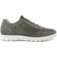Sapatos Homem Sapatilhas IgI&CO 7118333 Verde