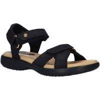 Sapatos Mulher Sandálias Panama Jack NOJA CORK BASICS B2 Azul