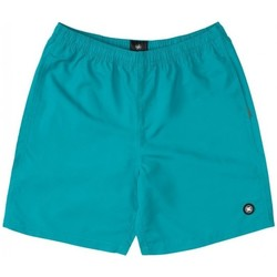 Textil Rapaz Fatos e shorts de banho DC Shoes BAÑADOR PISCINA NIÑO DC EDBWS03069 Verde