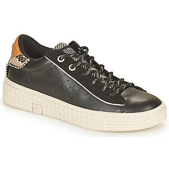 Sapatos Mulher Sapatilhas Palladium Manufacture TEMPO 04 SYN Preto