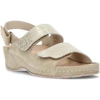 Sapatos Mulher Sandálias Dtorres ELENA BEIG