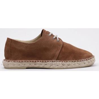 Sapatos Homem Sapatos Senses & Shoes  Castanho