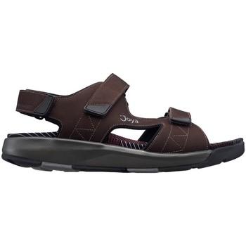 Sapatos Homem Sandálias Joya Capri III MARROM ESCURO