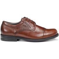 Sapatos Homem Sapatos Fluchos 8468 NATURAL SIMON STK CASTANHO