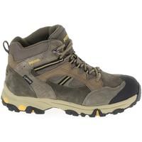 Sapatos Criança Sapatos de caminhada Meindl Tampa GTX K Brun Castanho