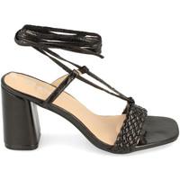 Sapatos Mulher Sandálias Prisska CQ1082 Negro