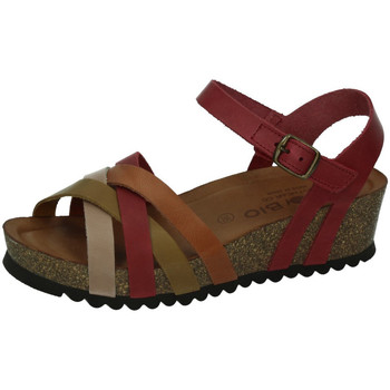 Sapatos Mulher Sandálias Biobio  Vermelho
