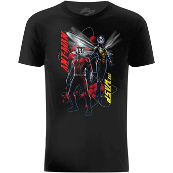 Textil Homem T-Shirt mangas curtas Ant-Man  Preto