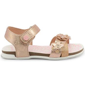 Sapatos Rapariga Sandálias Shone - l6133-036 Rosa