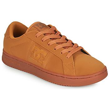 Sapatos Homem Sapatilhas DC Shoes STRIKER Camel