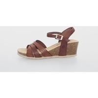 Sapatos Mulher Sandálias Yokono CADIZ-118 Marrón