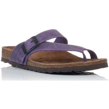 Sapatos Mulher Sandálias Interbios 7119 Violeta