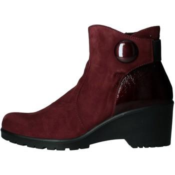 Sapatos Mulher Botins Enval - Stivaletto  bordeaux 6276433 BORDEAUX