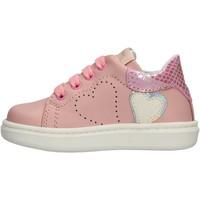 Sapatos Rapaz Sapatilhas Balducci - Polacchino rosa MSP3604R ROSA