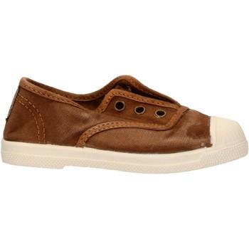 Sapatos Rapaz Sapatilhas Natural World - Scarpa elast marrone 470E-686 MARRONE