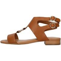 Sapatos Mulher Sandálias Apepazza S1PETIT19/LEA Castanho