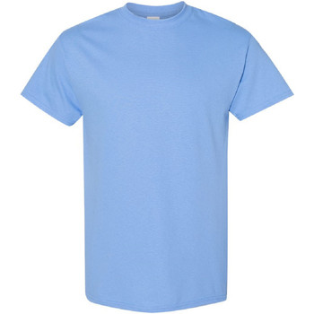 Textil Homem T-Shirt mangas curtas Gildan 5000 Carolina Blue