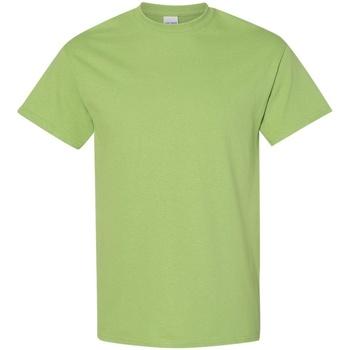 Textil Homem T-Shirt mangas curtas Gildan 5000 Kiwi