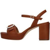 Sapatos Mulher Sandálias Tres Jolie 2084/NORA Castanho