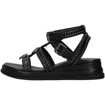 Sapatos Mulher Sandálias Zoe CHEYENNE04 Preto