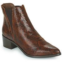 Sapatos Mulher Botins Betty London PERDRI Castanho