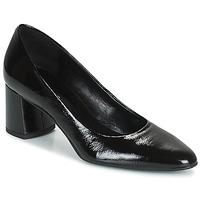 Sapatos Mulher Escarpim Betty London PANEA Preto