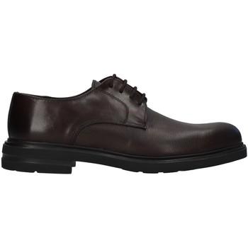 Sapatos Homem Sapatos Antony Sander 720 Castanho