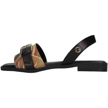 Sapatos Mulher Sandálias Gattinoni PEGAF6171WH Preto