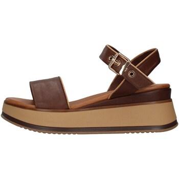 Sapatos Mulher Sandálias Inuovo 774011 Castanho