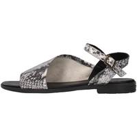 Sapatos Mulher Sandálias Bueno Shoes 21WN5001 Preto