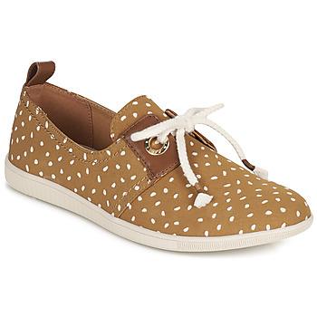 Sapatos Mulher Sapatilhas Armistice VOLT ONE Castanho