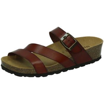 Sapatos Mulher Sandálias Biobio