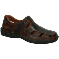 Sapatos Homem Sandálias 48 Horas  Castanho