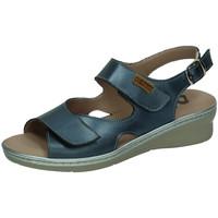 Sapatos Mulher Sandálias 48 Horas  Azul