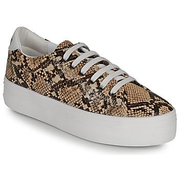 Sapatos Mulher Sapatilhas No Name PLATO M Castanho