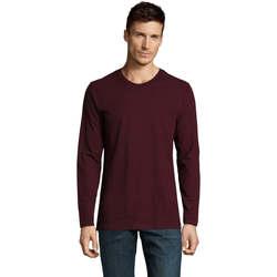 Textil Homem T-shirt mangas compridas Sols Camiseta manga larga Burdeo