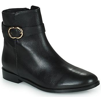 Sapatos Mulher Botas baixas Minelli FANNITA Preto