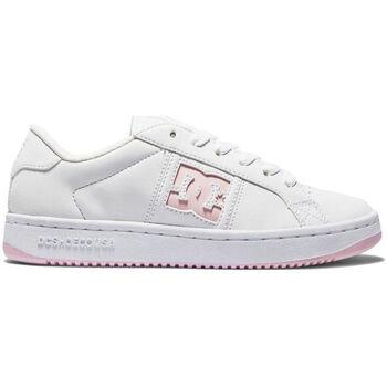 Sapatos Mulher Sapatilhas DC Shoes Striker adjs100138 wpn Branco